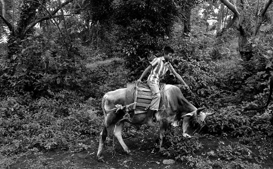 nicaragua-photographer-rates
