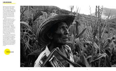 Nicaragua Corn Harvest