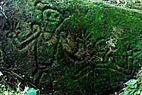 Indigenous Petroglyphs, Boaco